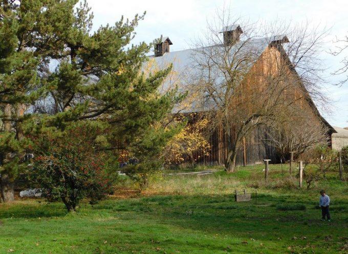Hanley Farm